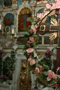 Закарпатська область photo ukraine